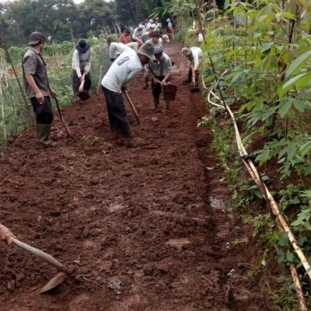 Album : Kegiatan Pembangunan Rabat Beton Kp Ogong